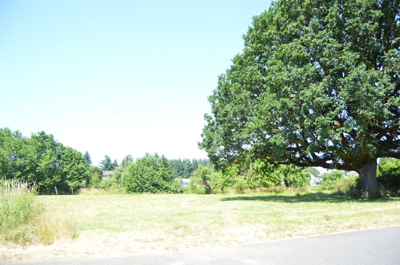 SPOTLIGHT FILE PHOTO - A soon-to-be developed park near Seely Lane in Scappoose will be called Tomee Park. The recreational area, not far from the Creekside Apartments, will include bathrooms and a pavilion, as well as the shade of an old oak tree.