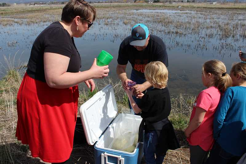 HOLLY SCHOLZ/CENTRAL OREGONIAN - Barnes Butte Elementary Building Coach Sarah Klann, left, and Prineville City Engineer Eric Klann help first-graders scoop bluegill fish into a pond at the wetlands.