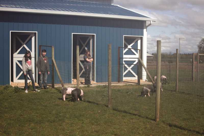PHIL HAWKINS - The new barn is already at maximum occupancy in its first year of operation, prompting FFA members to look at future expansion of the facilities to accomodate more animals as the program grows.