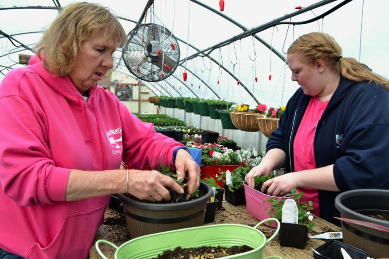 POST PHOTO: BRITTANY ALLEN - Bushue's Family Farm has been operating in Boring for more than 100 years, and Helen and Lara Bushue have hosted their opening weekend Taste of Local for five years.