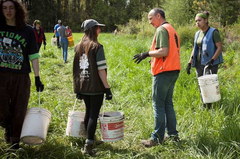 SPOKESMAN PHOTO: JAIME VALDEZ - Wilsonville Planning Commission member Simon Springall leads a crew of volunteers at the Memorial Park Pollinator Hedgerow Plant Care event April 21. The Earth Day event was hosted by Friends of Trees; volunteers removed invasives and mulched native shrubs and flowers.