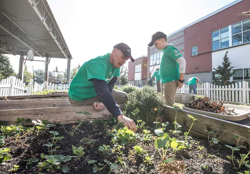 TIMES PHOTO: JONATHAN HOUSE - Marc Farrar helps clean a gardening box during Comcast Cares Day at Metzger Elementary.