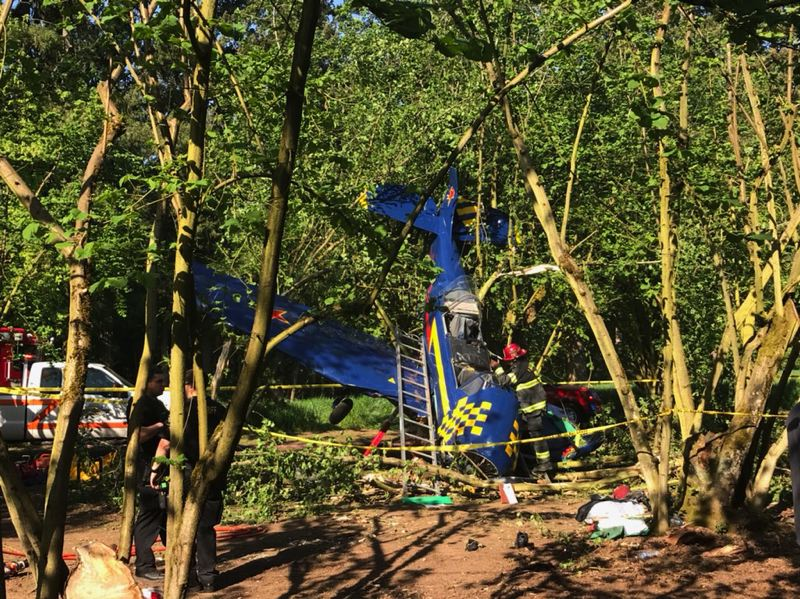 COURTESY PHOTO: TUALATIN VALLEY FIRE & RESCUE - A single-engine plane crashed into a filbert orchard outside Cornelius at low speed Thursday afternoon.