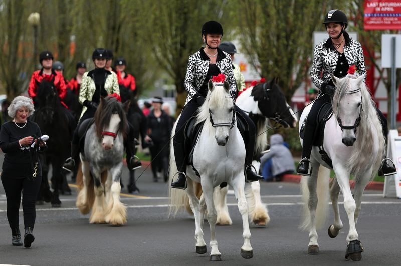 JESSIE DARLAND - Friesian horses carry their riders through the parade.