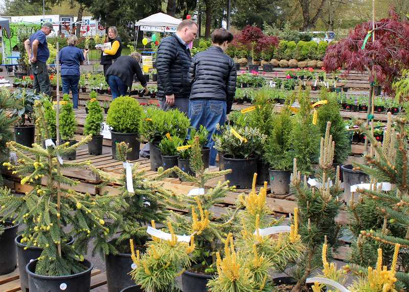 SPOKESMAN FILE PHOTO - Rite Aid Foundations annual plant sale returns May 4-5 with wholesale garden items available in a fun, festive environment.