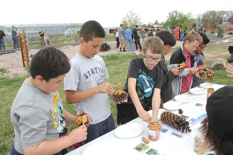 SUSAN MATHENY/MADRAS PIONEER - Metolius Elementary fifth-graders, from left, Nathan Covarrubias, Traegan Campbell, Gerald Spiller, Jayden Moll Palono, Steven Johnson and Hector Llanos smear peanut butter on pine cones to make bird feeders at an activity table run by Madras High School agriculture students at the Madras Arbor Day celebration on April 27. The slathered cones were rolled in bird seed and then had strings attached for hanging in a tree. The city of Madras was marking its 25th year as a Tree City USA.