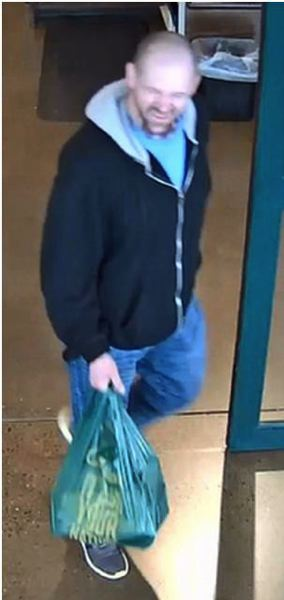 PHOTO: TUALATIN POLICE - Suspect in recent thefts.
