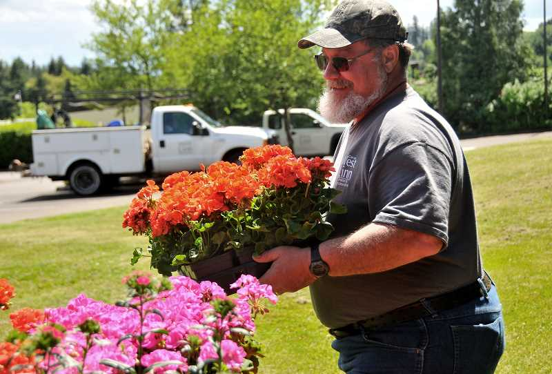 Ron Jones restocks his some geraniums.