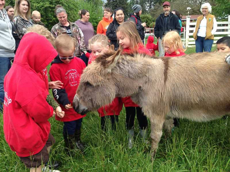 CONTRIBUTED PHOTO: KIT COLLINS - Students from Red Barn Preschool enjoy getting to know Val the miniature donkey during a recent visit to Out to Pasture Animal Sanctuary.