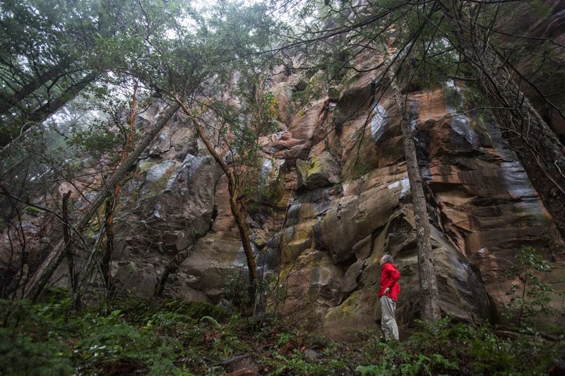 PHOTO BY JONATHAN HOUSE - Keith Daellenbach is dwarfed by the 100-foot tall basalt rock cliff at Madrone Wall Park near Carver.