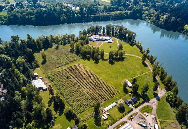 PHOTO COURTESY OF PLATINUM LUXURY AUCTIONS - Mark Wattles' massive, unfinished home sits on 31.8 acres along the Willamette River, wedged between West Linn and Wilsonville. The house and property will be up for bid in a no-reserve auction scheduled for June 14.
