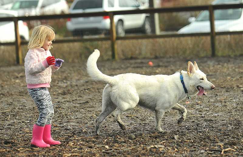REVIEW FILE PHOTO: VERN UYETAKE - Lake Oswego's Hazelia Field and its dog park on Stafford Road are popular destinations for pet owners. But police are warning visitors to lock their cars and take valuables with them before heading out with Fido after a recent string of car break-ins.