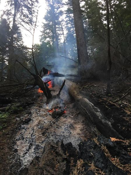 CONTRIBUTED PHOTO:U.S. FOREST SERVICE - A small fire reignited in the Eagle Creek Fire area on Tuesday, May 29.
