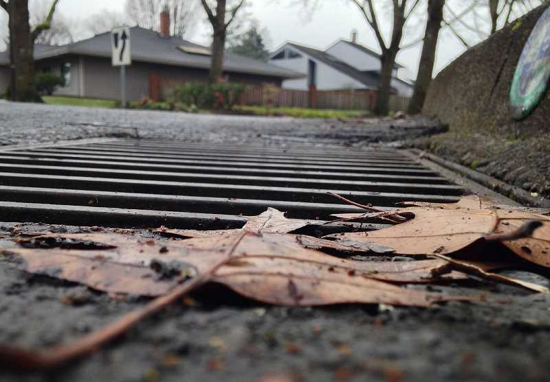 SPOKESMAN FILE PHOTO - Wilsonville may increase its penalties for people who spill contaminated substances into the stormwater system.
