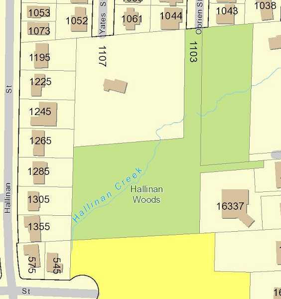 MAP COURTESY OF THE CITY OF LAKE OSWEGO - The current area of Hallinan Woods is identified in green on a City map. Neighbors hope the City will expand the woods by purchasing the property at 1107, which is currently mostly wooded but fenced off and slated for redevelopment.