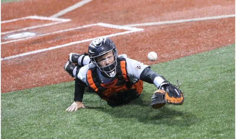 TRIBUNE PHOTO: SCOTT CASSIDY - Oregon State catcher Adley Rutschman just misses an acrobatic dive for a foul ball.