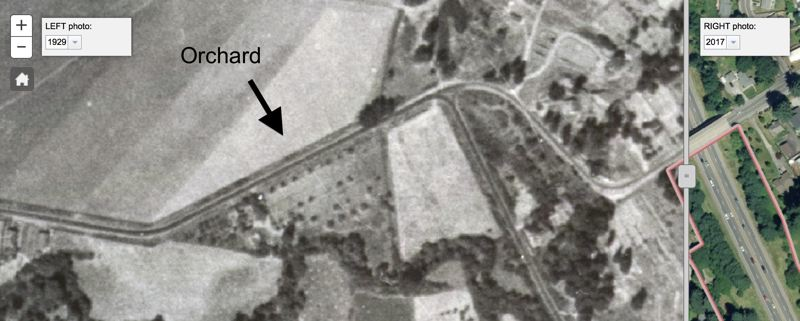 SOURCE: OREGON CITY GIS - 1929 aerial photograph showing an orchard in the location described by O.D. Robbins as containing the gravesite of the Cayuse Five.