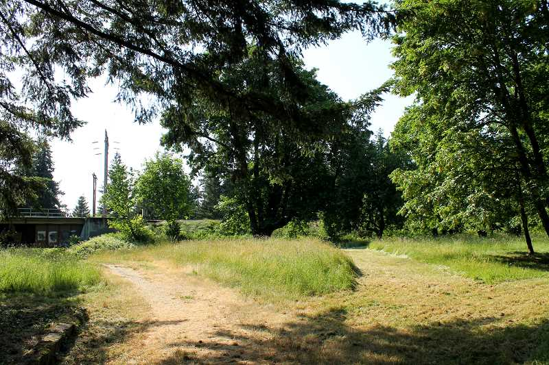 SPOKESMAN PHOTO: LESLIE PUGMIRE HOLE - The natural area adjacent to Boones Ferry Road across from the park is the alignment City Council selected unanimously at its June 4 meeting. Part of the natural area would be developed as a run-up to the bridge.