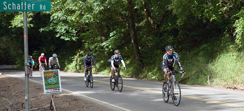 PHOTO COURTESY STUMPTOWN IMAGES - Riders in the June 16 Columbia Century Challenge cruised along Schaffer Road for part of their ride, which follows the Clatskanie River in the northern end of the county.