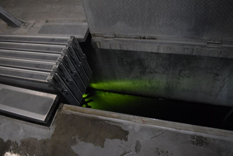 OUTLOOK PHOTO: MATT DEBOW - Green ultraviolet light is used to purify water in the final step of the wastewater treatment process before it is pumped into the Sandy River.