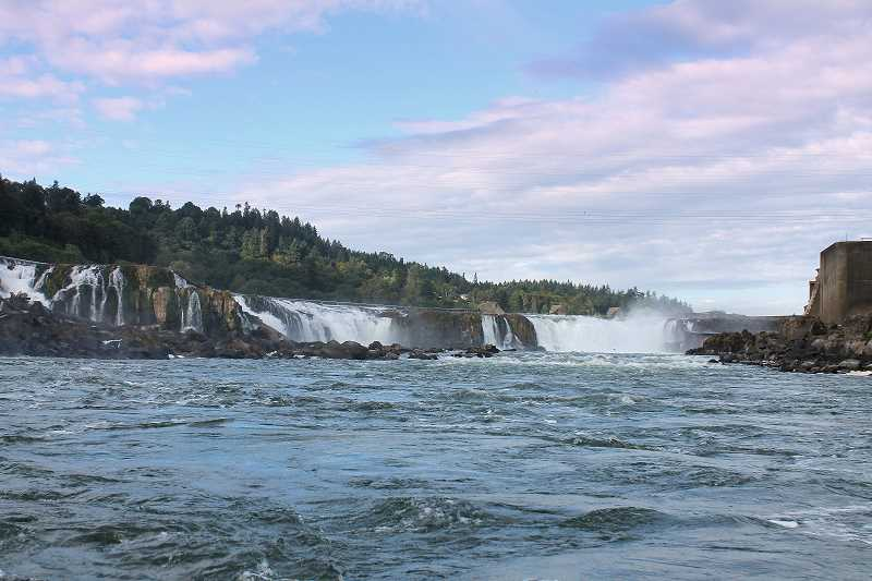 PAMPLIN MEDIA GROUP: ALVARO FONTAN - Nearly 40 percent of the precipitation that falls on the edges of the Willamette Valley tumbles over Willamette Falls.