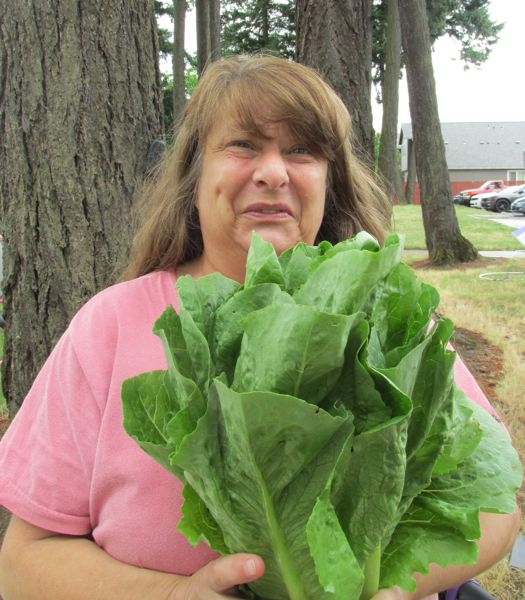 OUTLOOK PHOTO: TERESA CARSON - Dawna Burnett from Gresham shows some romaine lettuce she picked out at a recent visit to the vegetable pharmacy.