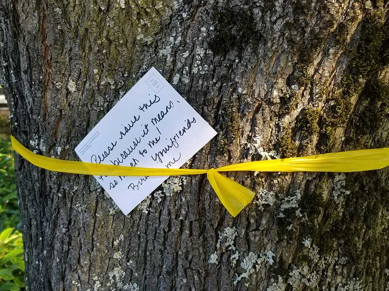 REVIEW PHOTO: GARY M. STEIN - Someone doesn't want to see the Providence Mercantile trees go; postcards with pictures of birds have been tucked behind the yellow ribbons, with messages asking that the trees be spared.