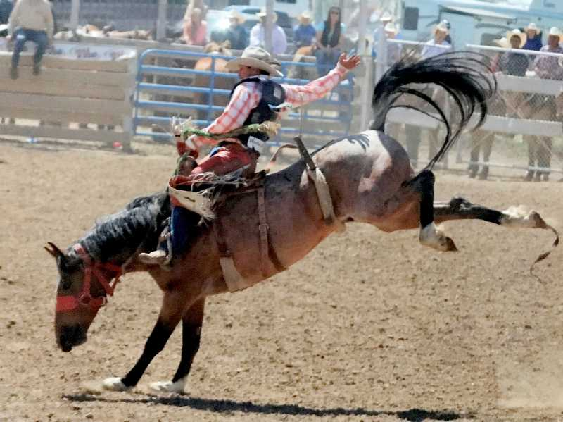 SUBMITTED PHOTO - Joe Scott is one of the four Jefferson County competitiors in the National rodeo competition.