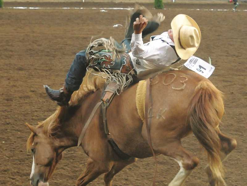 GARY ALLEN - A bareback rider tries not to be thrown from the horse's back. This year's overall winner is now a threepeat bareback champion: Tim O'Connell, of Zwingle, Iowa, who scored 85.5 points.