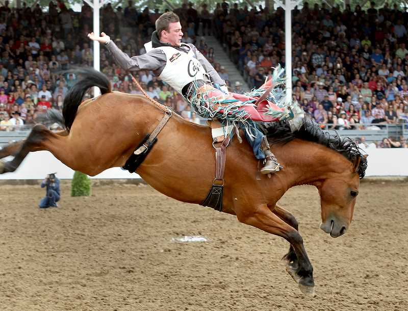 PHOTO BY HOOT CREEK - For the third consecutive year, the St. Paul Rodeo bareback riding championship went to Tim O'Connell. O'Connell is the reigning and two-time bareback riding world champion.