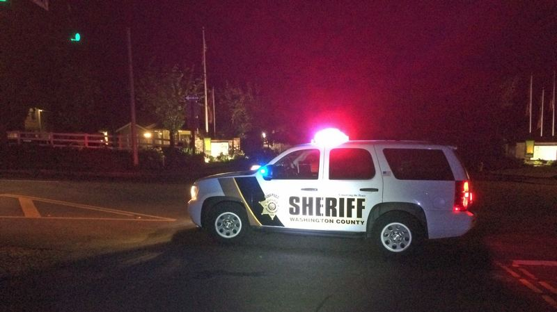 PHOTO: WCSO - Deputies respond Tuesday, July 10, when a pedestrian was struck by a vehicle near King City.
