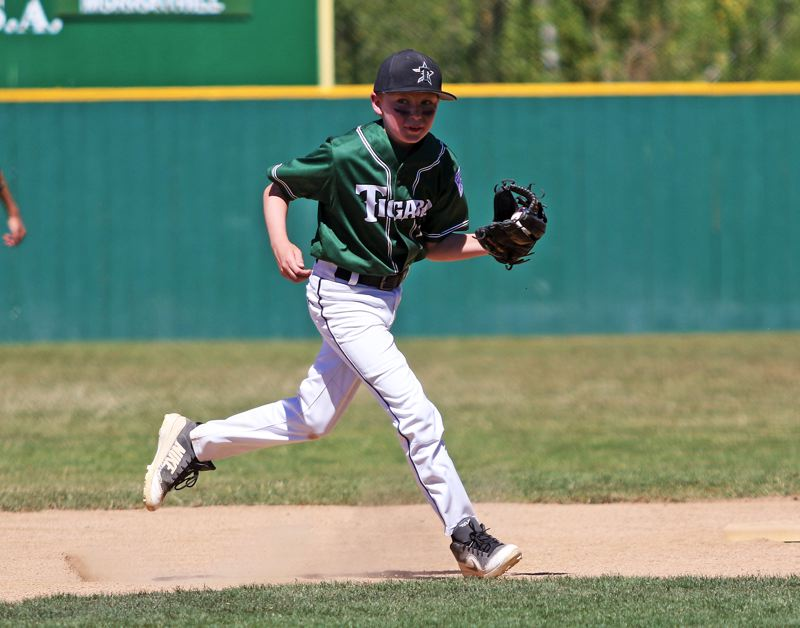 TIMES PHOTO: DAN BROOD - Tigard Little League shortstop Tyler Heermans-Balden fields a grounder during action on Sunday at the District 4 tournament.