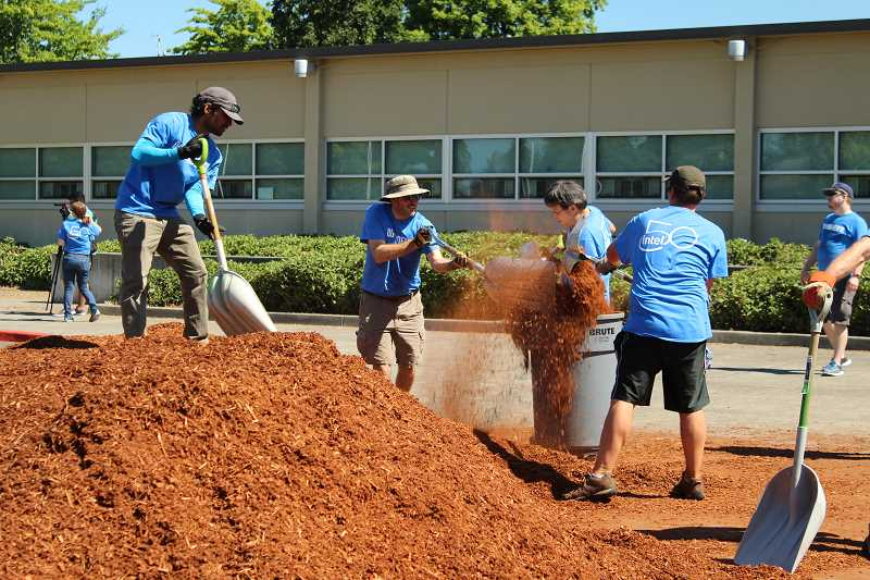 STAFF PHOTO: OLIVIA SINGER - Intel's Device Development Group participated in 'Community Give Back Day' landscaping, among other projects, at J.W. Poynter Middle School on Thursday, July 12.