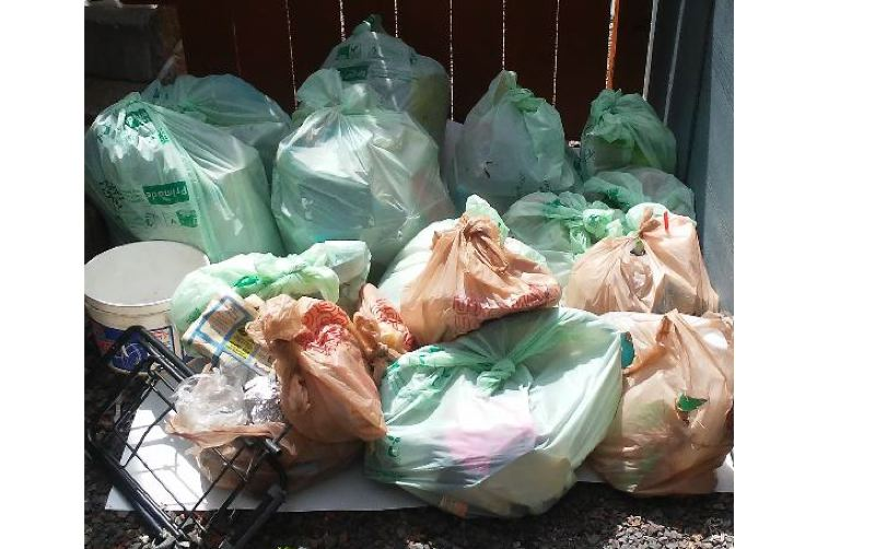 SUBMITTED PHOTO - Monte Harris collected this pile of garbage from 17 local environmental sites between July 1 and 7.