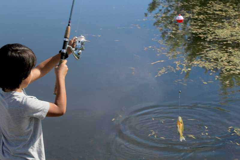 STEELE HAUGEN - Kids Club of Jefferson County took members to the Jefferson County Youth Fishing Pond, Friday, July 13.