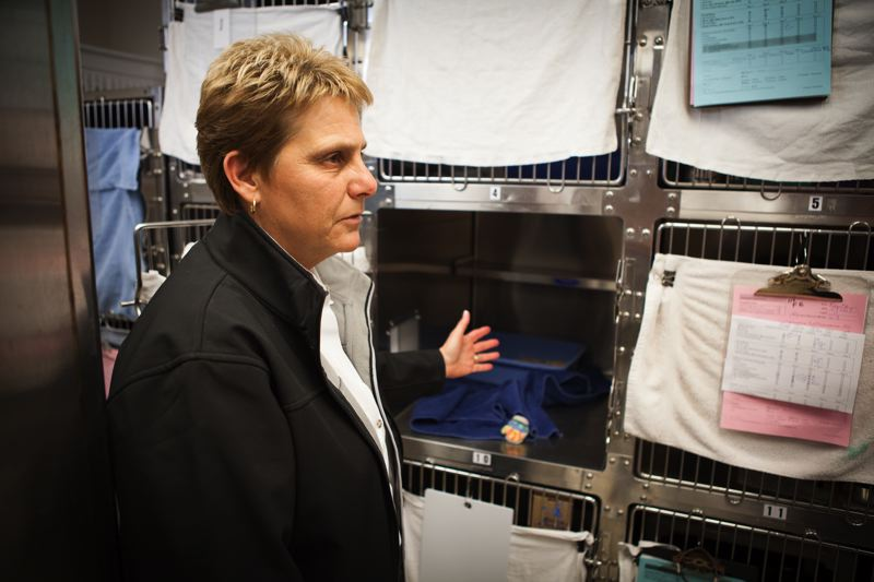 TRIBUNE PHOTO: ADAM WICKHAM - Multnomah County Animal Services Director Jackie Rose, shown during a 2016 tour of the Troutdale animal shelter's cat cages area. The cages have since been replaced with larger ones in response to an audit that year.