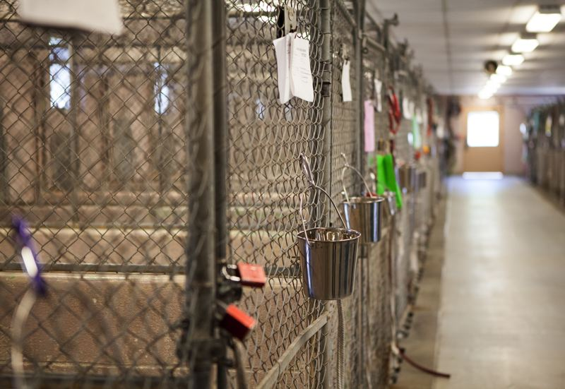 TRIBUNE PHOTO: ADAM WICKHAM - County officials hope to replace the aging shelter facility in Troutdale as money becomes available.