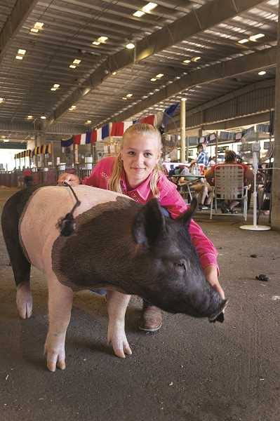 PATRICK EVANS - Lily McCargar readies her pig, Mousy, for showing Friday at the Marion County Fair.