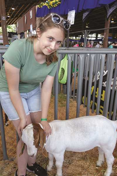 PATRICK EVANS - Skye Schultz's goat, Milkdud, won second in class.