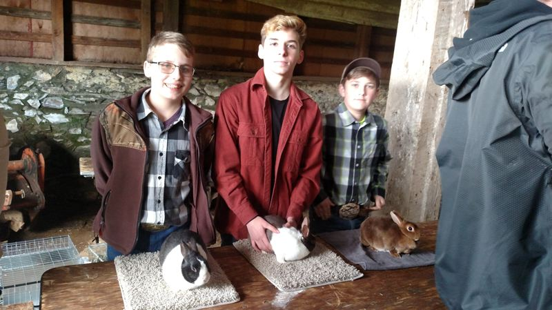 PHOTO BY: TAMMY JOHNSON, 4-H LEADER - Local 4-H members Daniel Johnson, Ben Johnson and Jake Allen film a scene showing the Rabbit Club meeting in Oregon City.