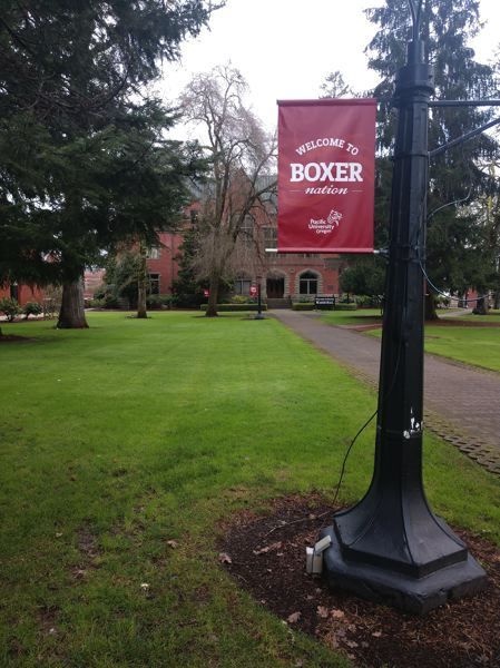 COURTESY PHOTO: TROY LINDELL - Pacific University is adding more than 20 students who had been attending now-shuttered Marylhurst University into Boxer Nation this school year.