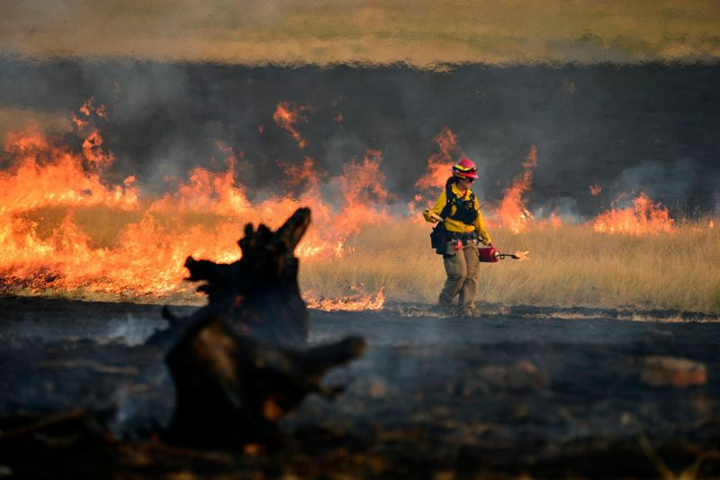COURTESY PHOTO - The state has spent more than $25 million fighting wildfires so far this season.