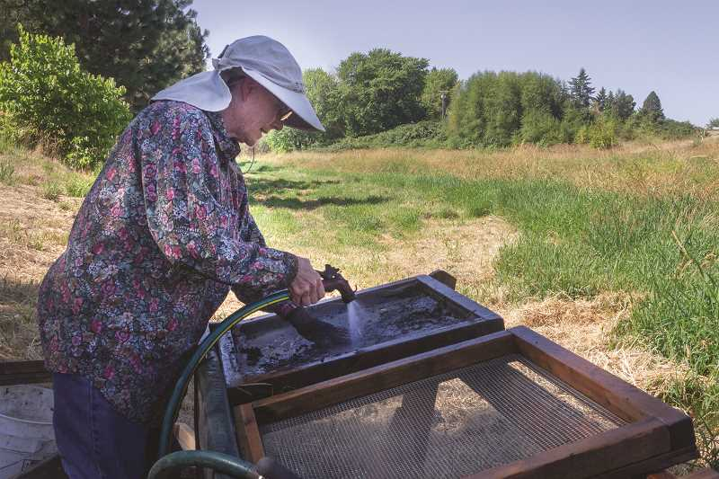 PATRICK EVANS - Susan Luchs rinses away sediment looking for bones. Last year she found three teeth and several chunks of skull from a bison at Legion Park.