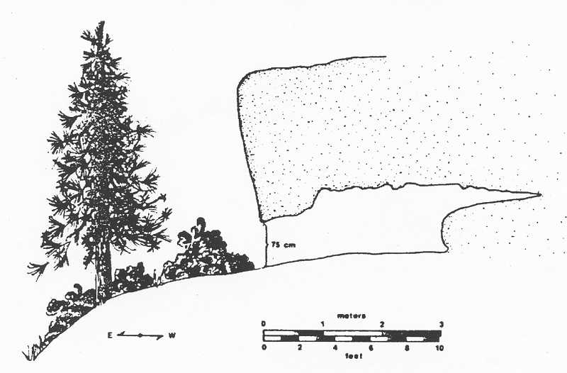 ARTWORK COURTESY OF BOWMAN MUSEUM  - Shown above is a diagram of Lava Island Rockshelter.