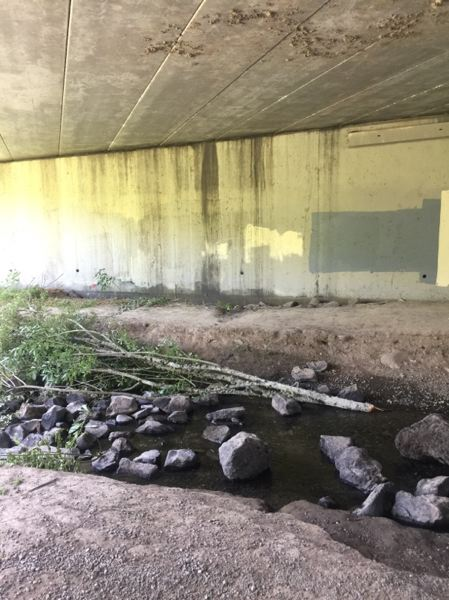 OUTLOOK PHOTO: MATT DEBOW - The pedestrian underpass at the Salish Ponds Trail is often marred with graffiti. On Sunday, Aug. 5, the latest vandalism was covered with patches of paint.