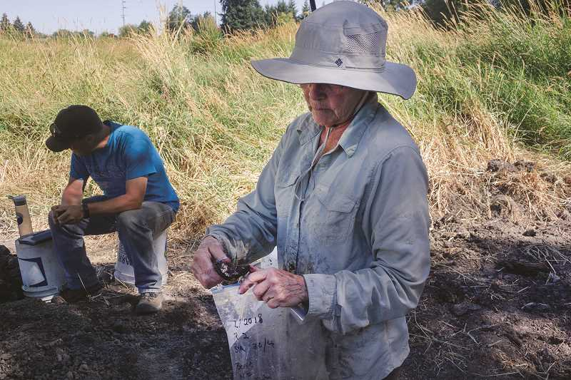 PATRICK EVANS - Volunteer Pam Horam holds a possible bison vertebra during a recent dig at Legion Park in Woodburn.