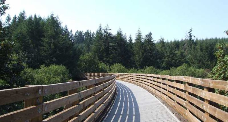COURTESY PHOTO - The Banks-Vernonia State Trail is already a popular recreational multi-use trail in northwestern Oregon.