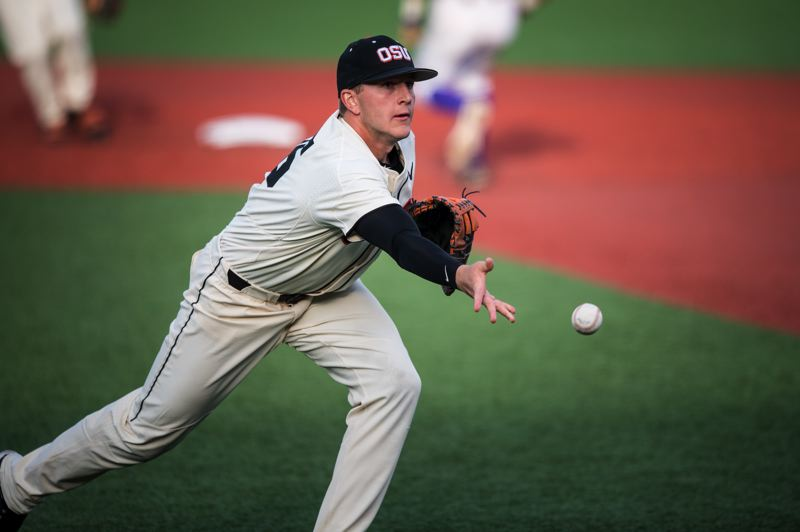 PHOTO COURTESY OF OREGON STATE UNIVERSITY - Zak Taylor, a 2015 Sherwood grad, played a strong first base for the NCAA national champion Oregon State University baseball team.