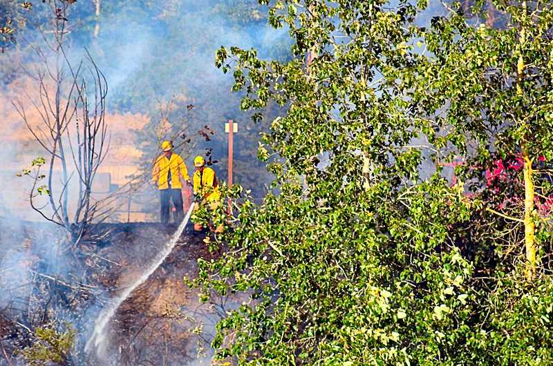 PF&R PHOTO - Firefighters sprayed water down the steep slope above the Springwater Trail, to put out a brush fire burning near McLoughlin Boulevard.