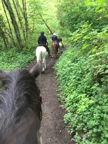 CONTRIBUTED PHOTO: REBECCA DUREN - Members of Oregon Equestrian Trails ride at Milo McIver State Park. On Saturday, Aug. 25, they will host a scavenger hunt at the park.
